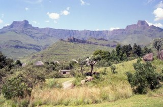 Drakensberg Bushman Paintings