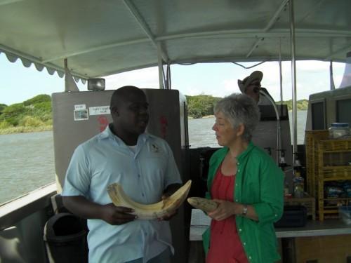 St Lucia Wetlands Tour